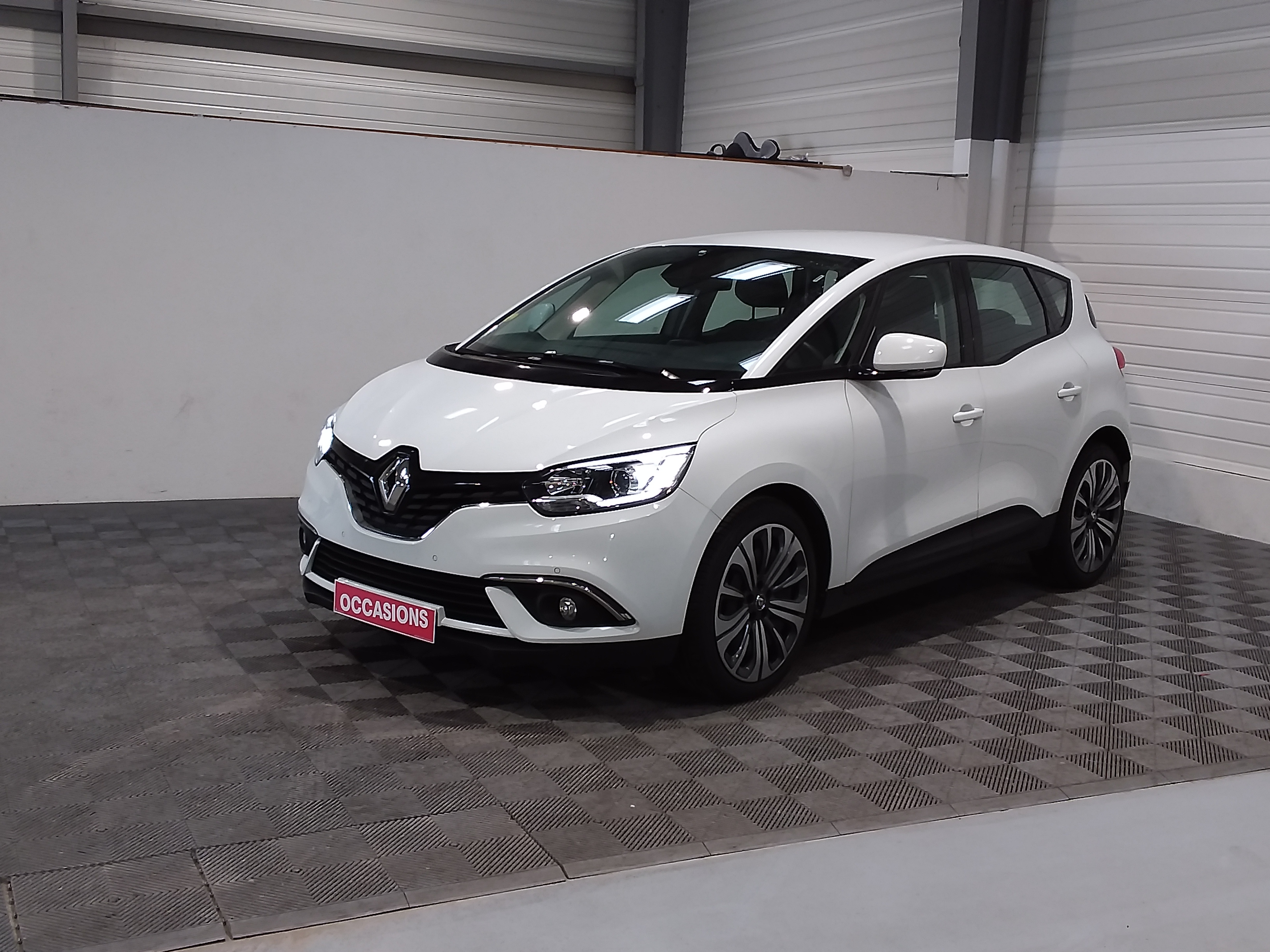 RENAULT SCENIC IV Life Blue dCi 120 d'occasion